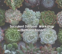 Succulent Diffuser Workshop with Bethany Bonacci